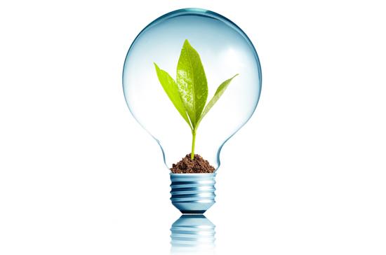 Glödlampa med en planta i.